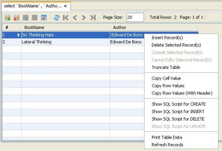 Query Output Window